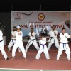 The Body & Soul Karate Team gave a splendid demonstration of their skills to entertain the attending dignitaries, spectators and students.